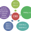 The pharmacological basis for application ...