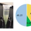 Rosemary oil nano-emulsion potentiates ...