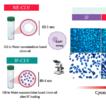 Coupling Ifosfamide to nanoemulsion-based ...